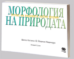 Атлас на видовете зъбни форми, Катаока и Нишимура
